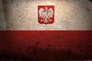 Помогу в изучении польского языка
