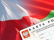Интенсивный курс польского языка в Бресте